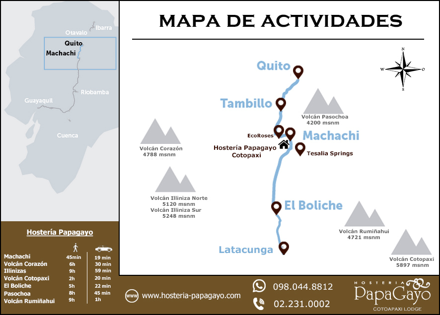 Actividades en PapaGayo