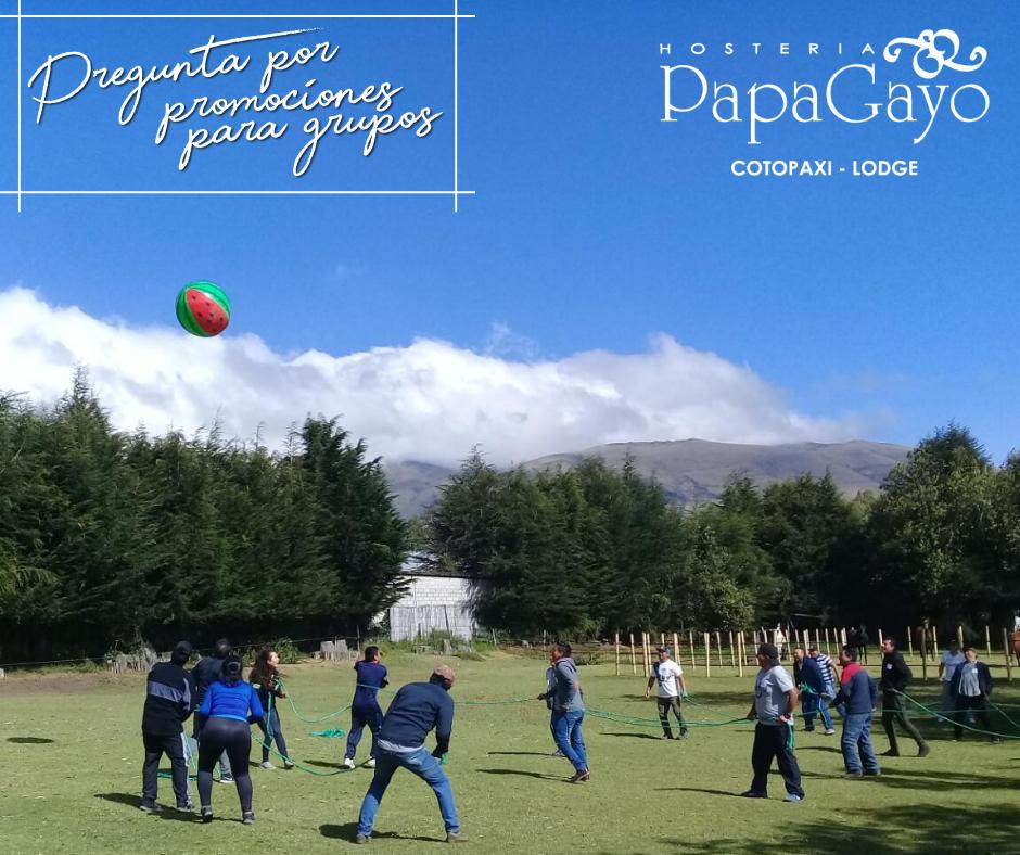 Promociones PapaGayo | Grupos